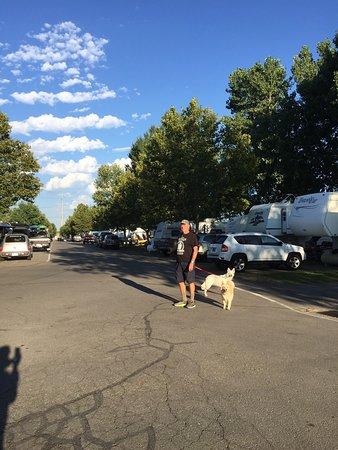 Springville, Utah: photo0.jpg