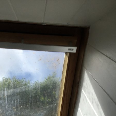 Egloskerry, UK: window which needs a clean - right over the bed with no blind