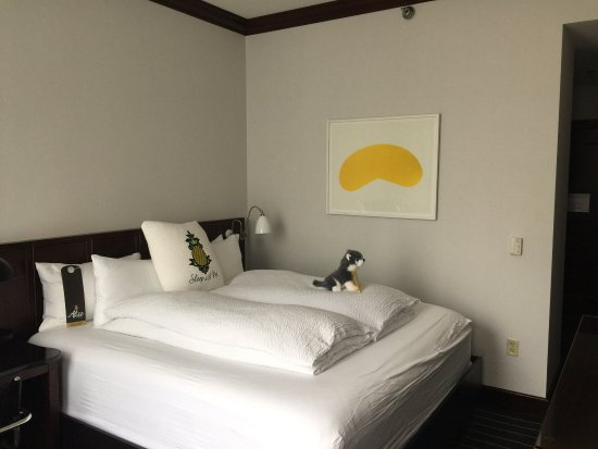 The Alise Chicago - A Staypineapple Hotel: photo1.jpg