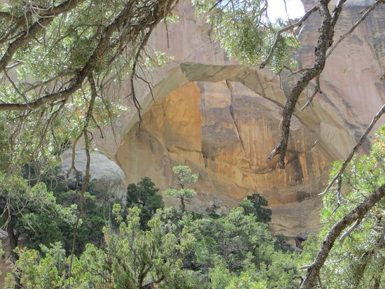 Grants, Нью-Мексико: La Ventana arch