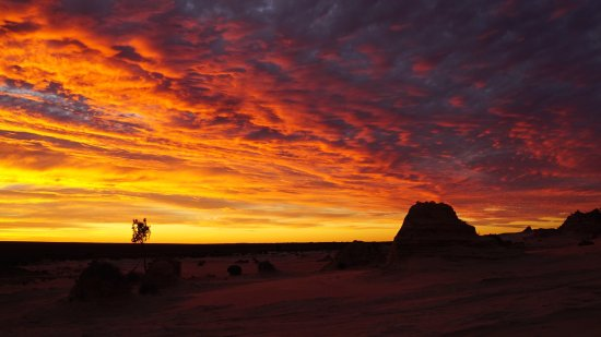 Buronga, Australia: photo5.jpg