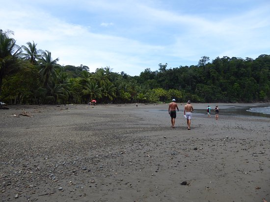 Ballena, Costa Rica: beach looking south