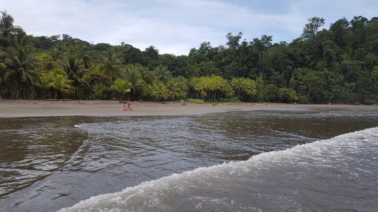 Ballena, Costa Rica: low tide