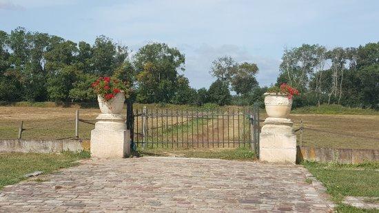 Chateau de Cone