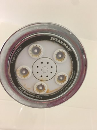 Fairfield Inn & Suites Cincinnati North / Sharonville: No Deadbolt. Dirty shower head.