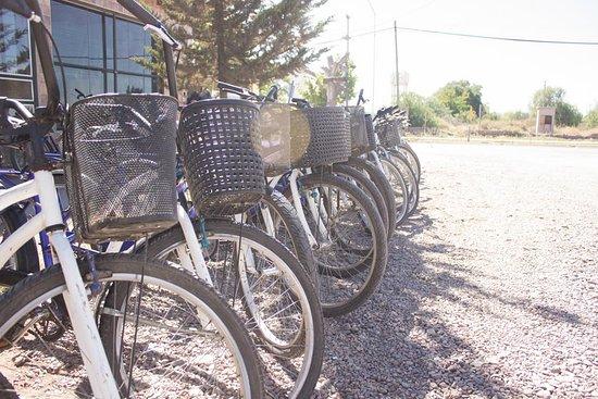 Maipu, Αργεντινή: Nuestras bicicletas siempre listas