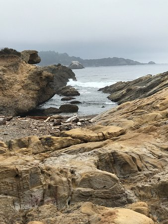 Point Lobos State Reserve : photo6.jpg