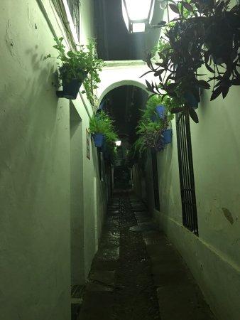 Calleja de las Flores: photo1.jpg