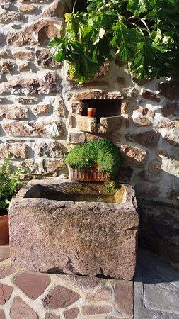 Etxalar, Spain: Fuente de agua de un manaltial