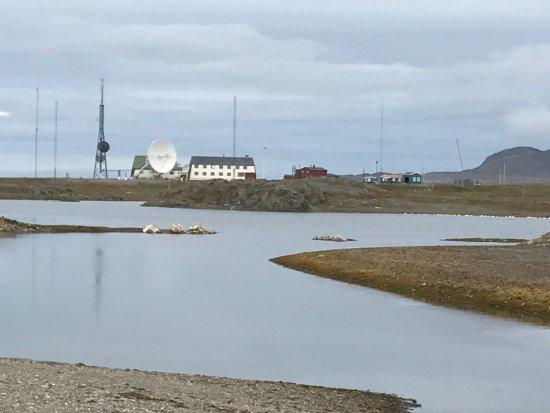 Isfjord Radio: photo1.jpg