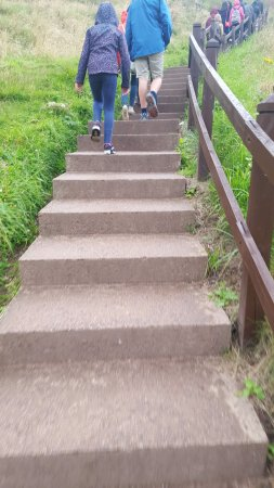 Stonehaven, UK: Steps going back to the car from the castle - was tiring but worth it