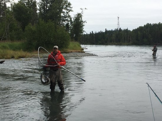 Soldotna, AK: Gathering up the Sockeye