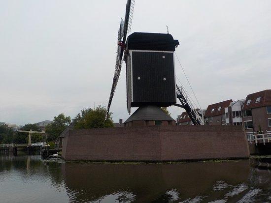 Le moulin - Picture of Rederij Rembrandt, Leiden - TripAdvisor