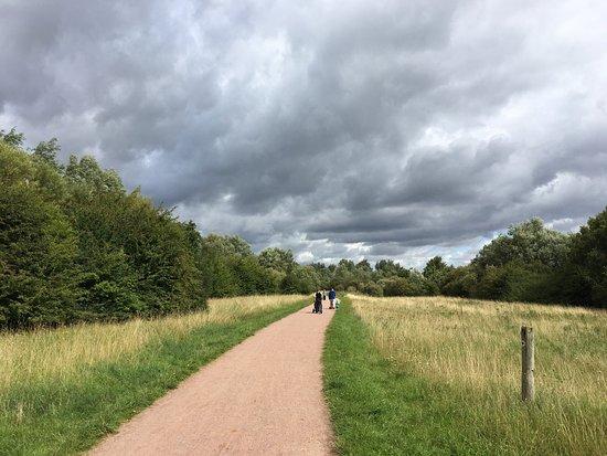 Stanwick, UK: photo8.jpg