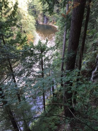 North Vancouver, Canadá: View from tree walk