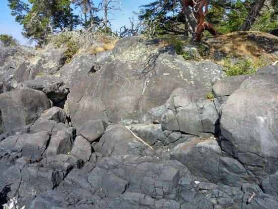 Sooke, Канада: Petroglyph at Alldridge Point
