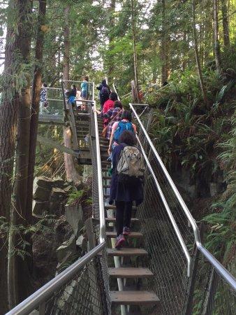 North Vancouver, Canadá: Cliff walk
