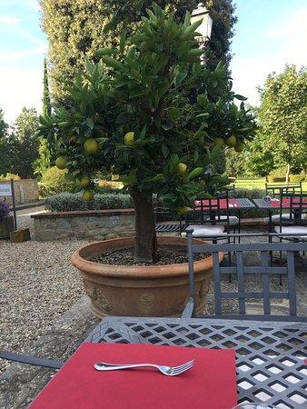 Borgo il Melone: photo6.jpg