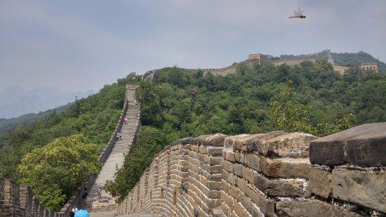 Mutianyu Great Wall: vista de la muralla china