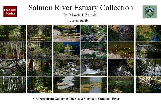 Campbell River, Canadá: Current Exhibition - Salmon River Estuary Collection by Marek J. Zaleski