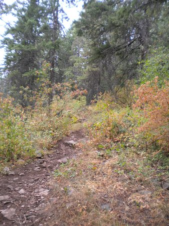 McKinnick Trail