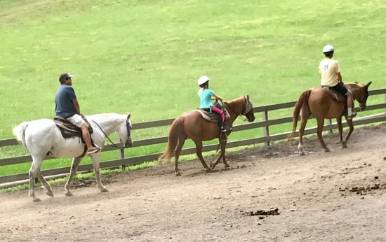 Rocking Horse Ranch Resort: Horseback Riding