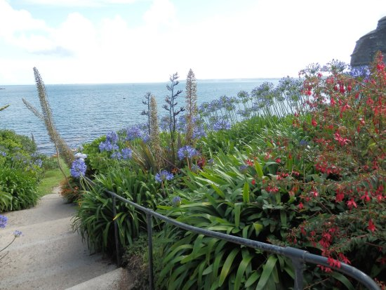 St Mawes, UK: The small garden next to the path is just beautiful.