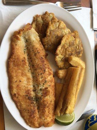 Mi Tierra Restaurant Toronto
