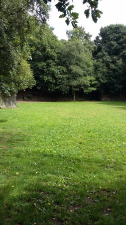 Bingley, UK: open field - events area, next to picnic area
