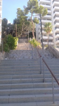 These Are The Steps Up To The Hotel Not Ideal If You Have Mobility