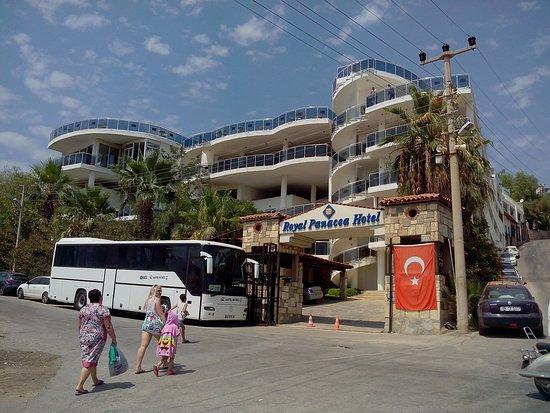 Royal Panacea Hotel Updated 2017 Prices Reviews Gumbet Turkey Tripadvisor