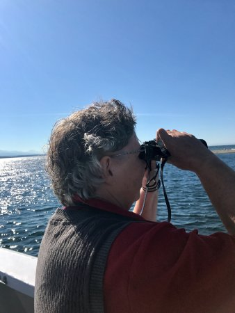 Edmonds, WA: Looking for the whales