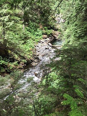 Snoqualmie Pass, WA: photo2.jpg