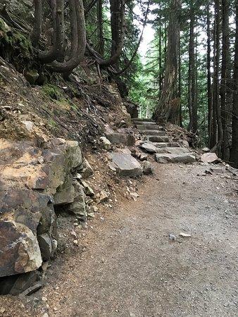 Snoqualmie Pass, WA: photo4.jpg