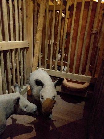 Williamstown, KY: Animal Display