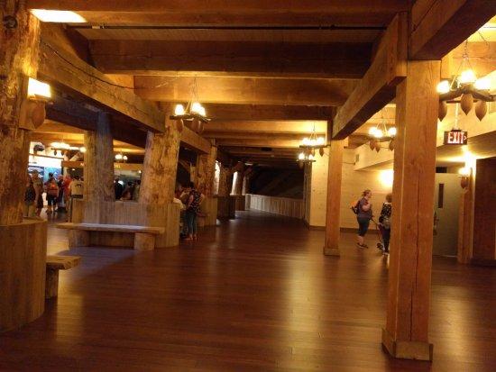 Williamstown, KY: Inside of Ark
