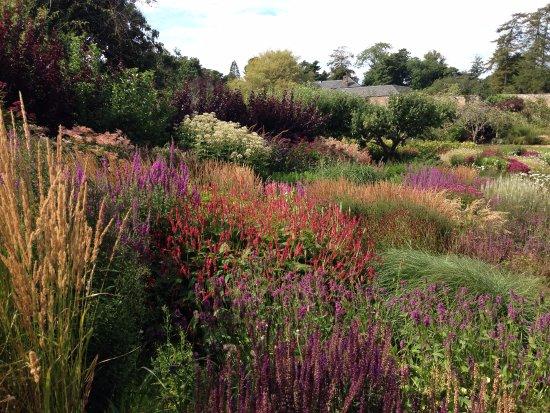 Kingsbarns, UK: Jardins