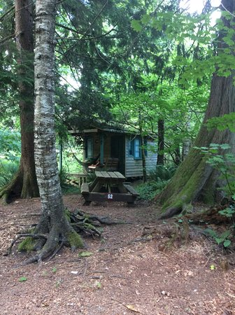 Harrison Hot Springs, Kanada: Campsite