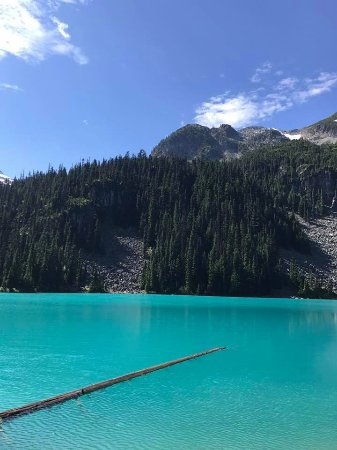 Pemberton, Canada: The log that juts out into Middle Lake is the perfect photo op stop.
