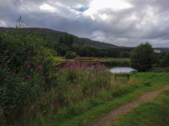 Aviemore, UK: Fly Fishing Loch, Rothiemurchus