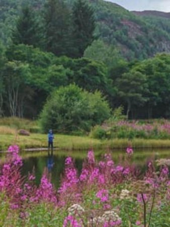 Aviemore, UK: Lesson Over, Novice Fly Fisherman on the Loch