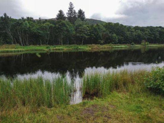 Aviemore, UK: Rothiemurchus Fly Fishing Loch