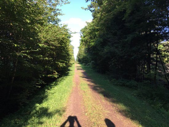Huckleberry Rail Trail: Just a few photos on the way.