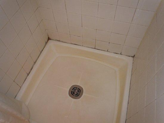 Balsam, NC: Mildew in the shower