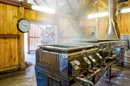 Bristol, Canada : Petite visite à La Paysannerie avec la préparation du sirop d'érable!