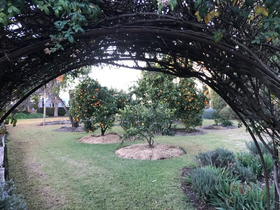 Hay, Australia: Beautiful gardens