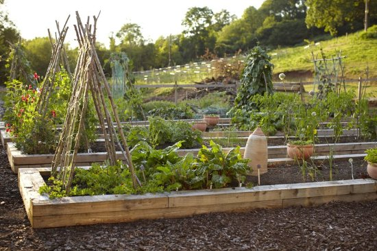 Clearwell, UK: Kitchen Garden