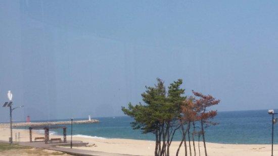 Goseong-gun, Coréia do Sul: レストランの目の前の浜辺