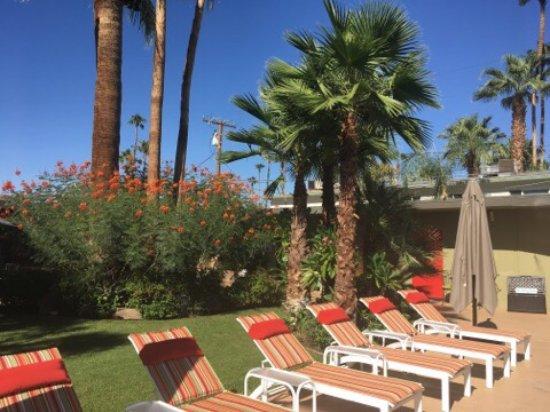 Desert Riviera Hotel: photo1.jpg