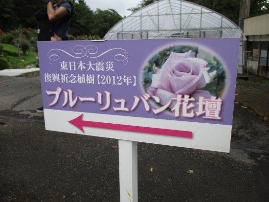 Foto de Hanamaki